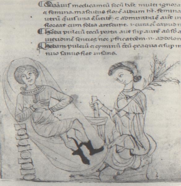 Manuscrit del segle XIII del Herbarium Apuleii Platonici, de Luci Appuleu (segle IV dc)