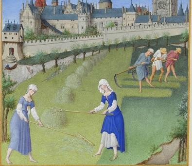 """""""Juny"""" a Les molt riques hores del duc de Berry dels germans Limbourg (1411-1416). Musée Condé, Chantilly, França"""